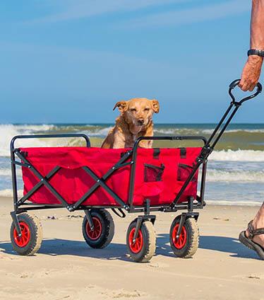 folding beach wagon