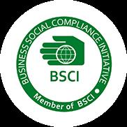 Kayak Product BSCI Certificate